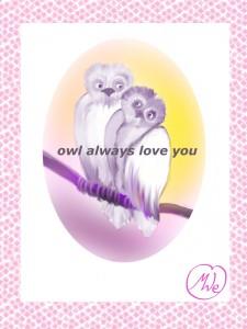 owlsplain